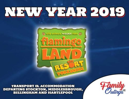 Flamingo Land New Year Break