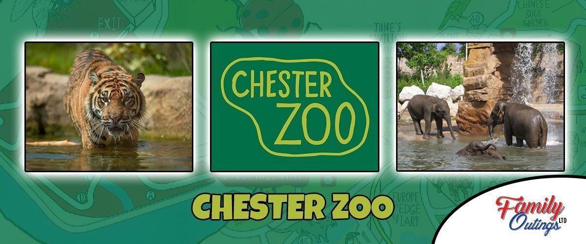 Destination Guide to Chester Zoo