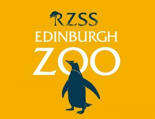 Edinburgh Zoo by coach