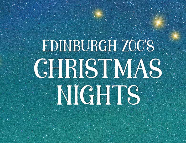 Edinburgh Zoo Christmas VIP Experience