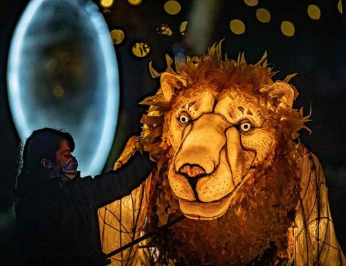 Chester Zoo Lanterns by Coach